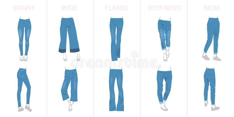 Illustration of jeans types stock illustration