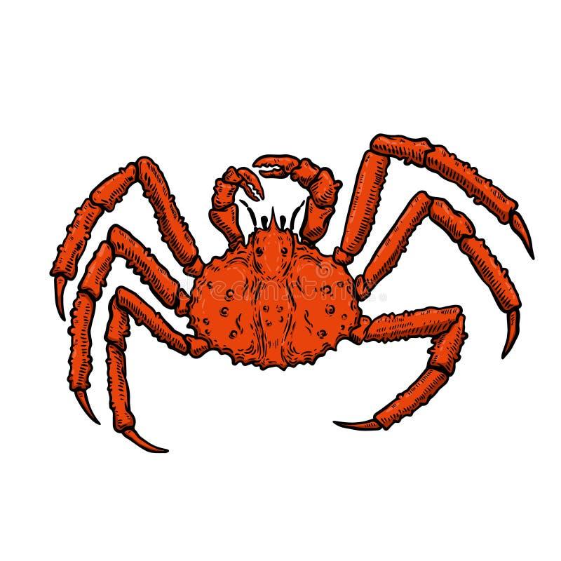 Illustration of King Crab isolated on white background. Design element for logo, label, emblem, sign, poster, menu, t shirt. stock illustration