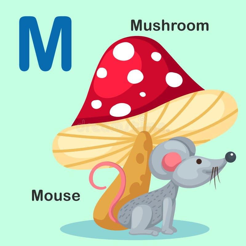Illustration lokalisierte Tieralphabet-Buchstabe-M-Maus, Pilz lizenzfreie abbildung