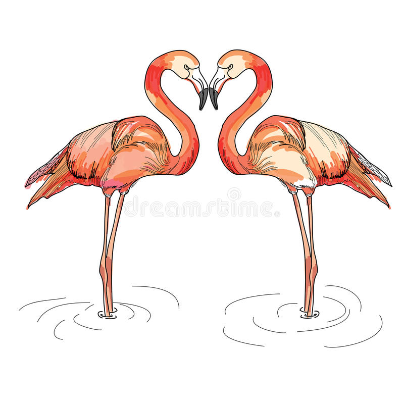 Illustration of love pink flamingos royalty free stock photos