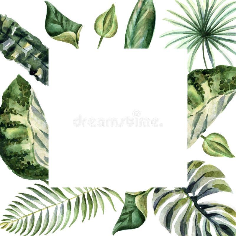 Illustration lumineuse d'été d'aquarelle avec les fleurs tropicales illustration libre de droits