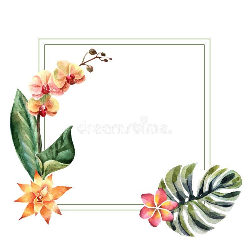 Illustration lumineuse d'été d'aquarelle avec les fleurs tropicales illustration de vecteur