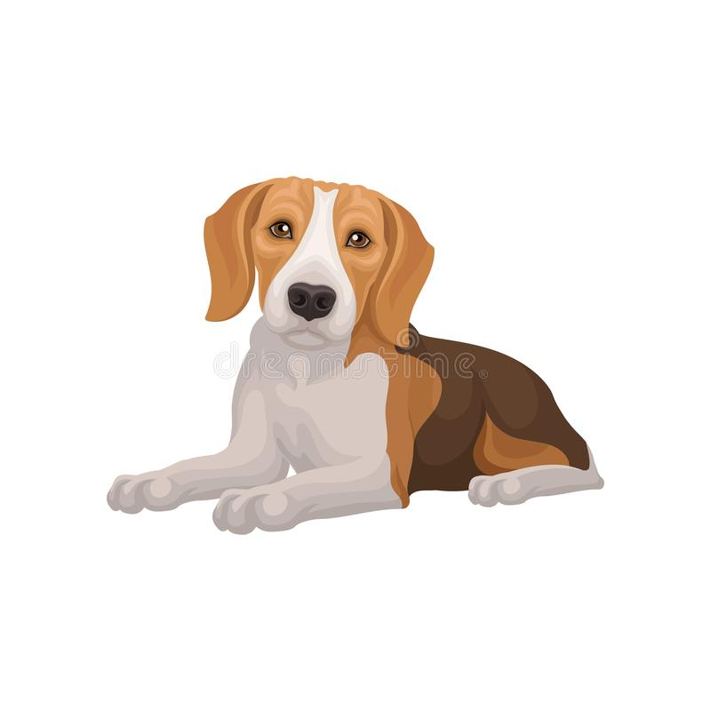 Flat vector design of lying beagle dog. Small puppy with cute muzzle. Domestic animal. Element for pet food packaging royalty free illustration