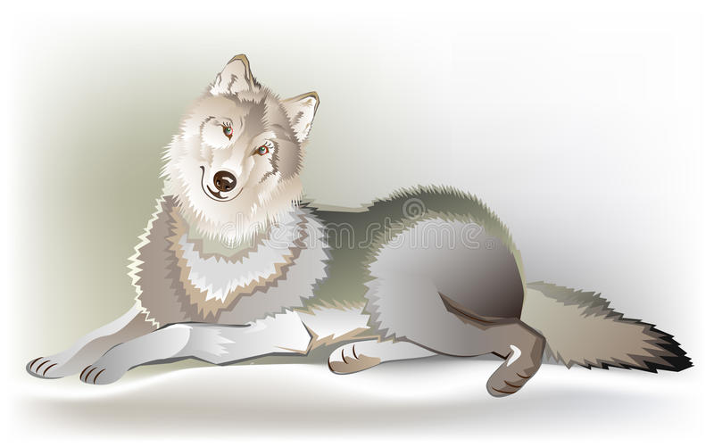 Illustration of lying wolf. Vector cartoon image. Scale to any size without loss of resolution vector illustration