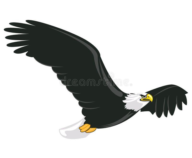 Illustration of majestic adult bald eagle flying. With white background stock illustration