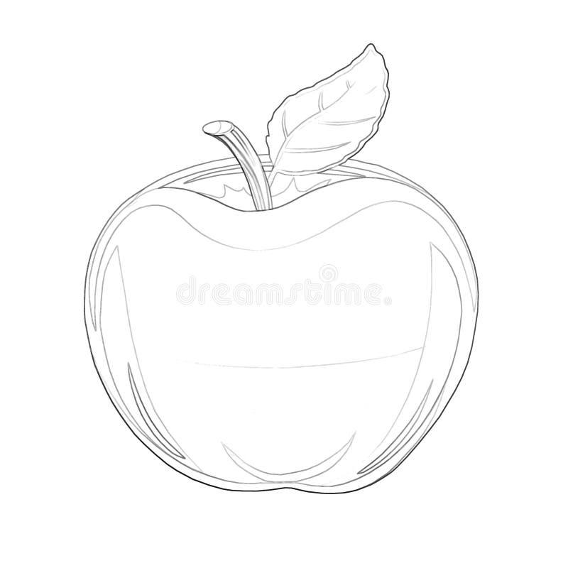 Illustration: Malbuch-Reihe: Apple Weiche dünne Linie lizenzfreie abbildung