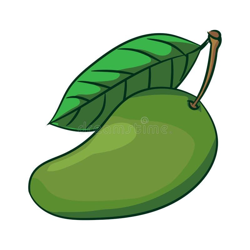 Illustration of Mango-Vector Illustration. Illustration of Mango with leaf isolate on white background-Vector Illustration royalty free illustration
