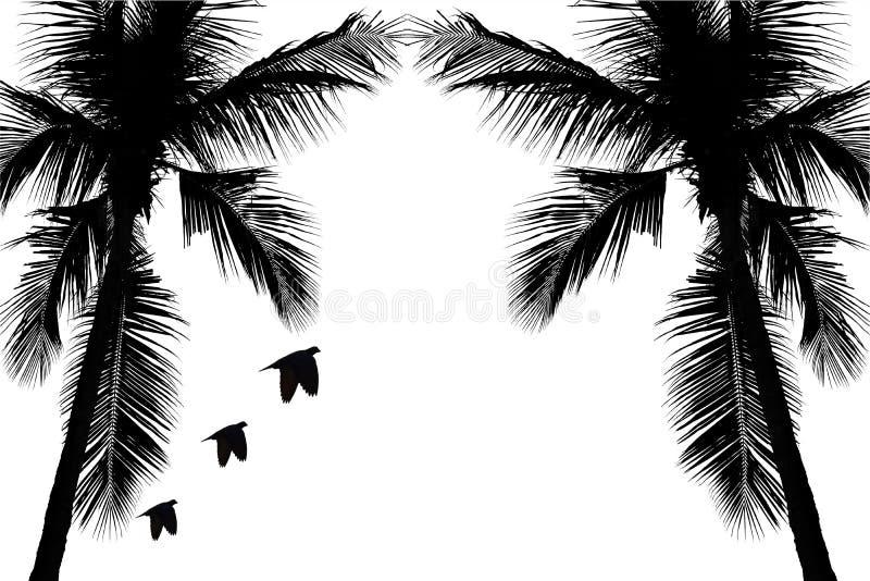 Illustration med kokospalmkonturn som isoleras på vit bakgrund och den snabba banan vektor illustrationer