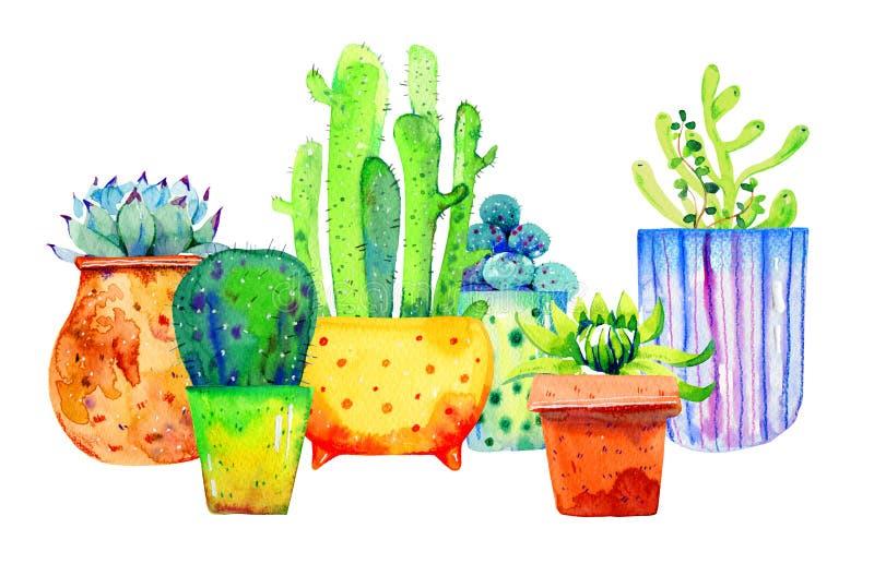 Illustration med olika kakturs och suckulenter i blomkrukor Skissar utdragen färg för vattenfärghanden royaltyfria foton