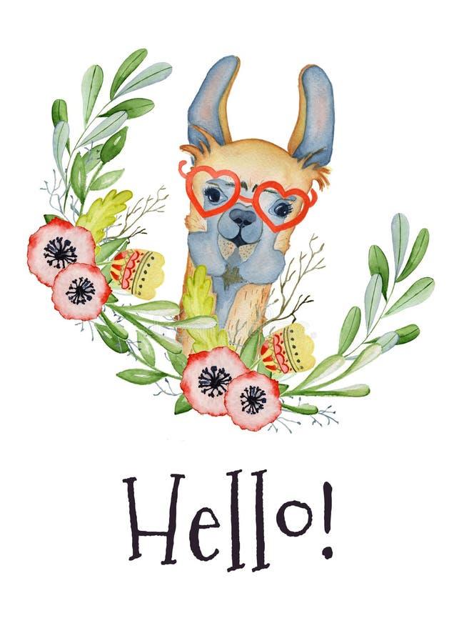 Illustration mignonne d'aquarelle de personnage de dessin animé de lama, animal d'alpaga, style tiré par la main Bonjour, fond bl illustration de vecteur