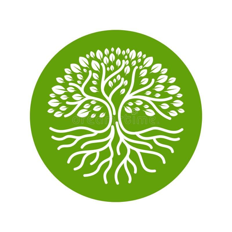 Illustration moderne de vecteur d'insigne de logo de cercle de racines d'arbre illustration libre de droits