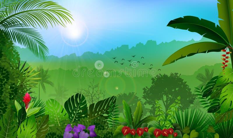 Morning in jungle rain forest background stock illustration