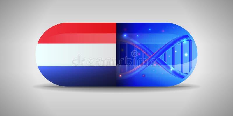 Illustration of the national pharmaceuticals of Netherlands. Drug production in Netherlands. National flag of Netherlands on. Capsule with gene   illustartion royalty free illustration