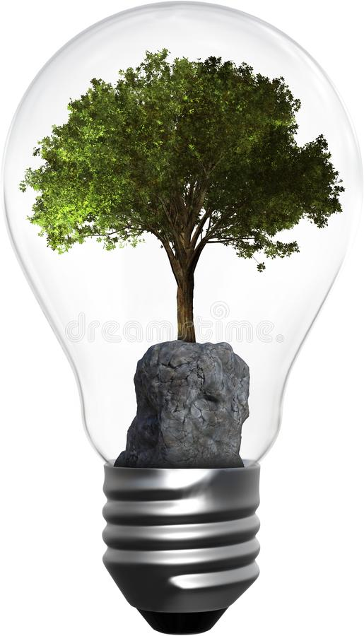 Light Bulb, Tree, Environment, Isolated, Energy, Green stock photos