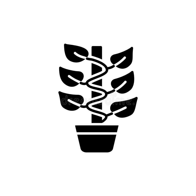 Illustration noire et blanche de vecteur d'usine s'élevante avec des feuilles illustration stock
