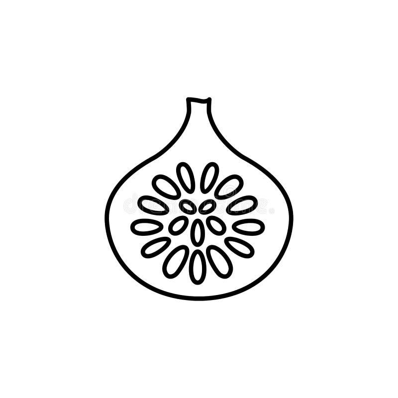Illustration noire et blanche de vecteur de fruit coupé de figue avec des graines L illustration libre de droits