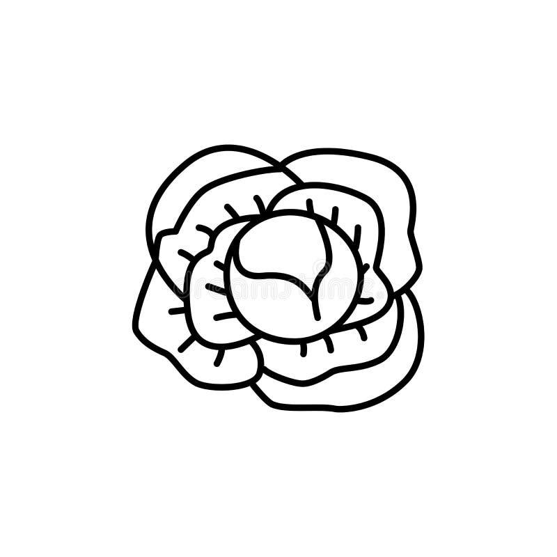 Illustration noire et blanche de vecteur de légume entier de chou Li illustration de vecteur