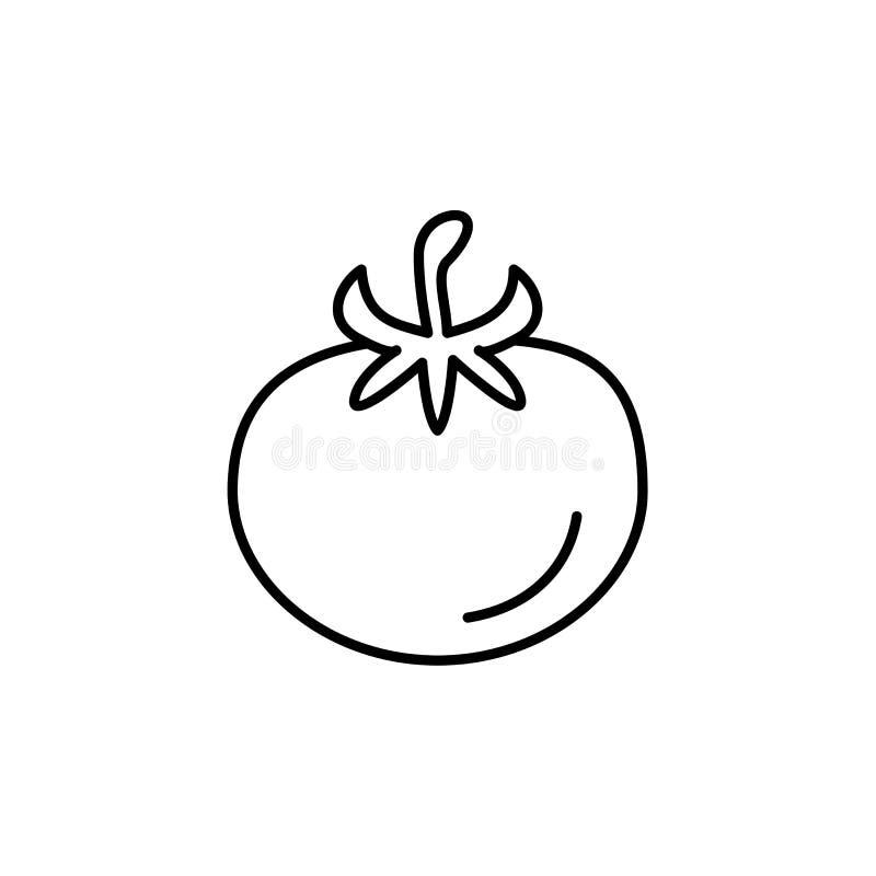 Illustration noire et blanche de vecteur de légume de tomate Ligne icône illustration de vecteur