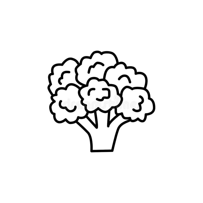 Illustration noire et blanche de vecteur de tête fleurissante de brocoli illustration stock