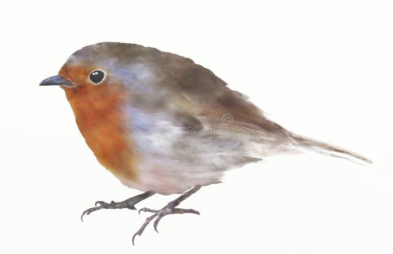Illustration numérique d'aquarelle d'oiseau de rouge-gorge illustration libre de droits