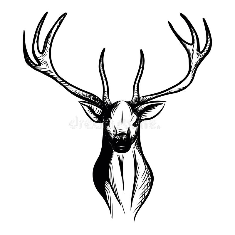 Free Illustration Of An Isolated Stag Head Royalty Free Stock Photo - 196677385