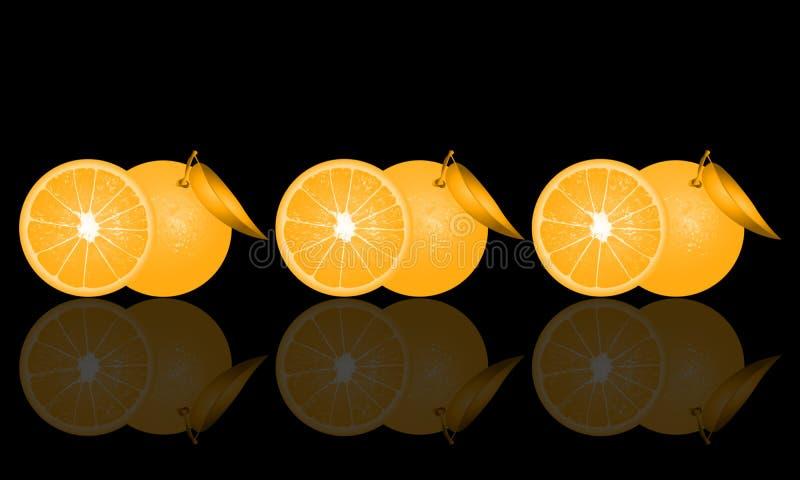 Illustration of oranges on black background and its reflection.  royalty free illustration