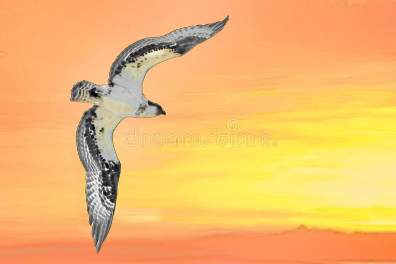 Illustration of an Osprey flying into a brilliant orange sunset stock photography