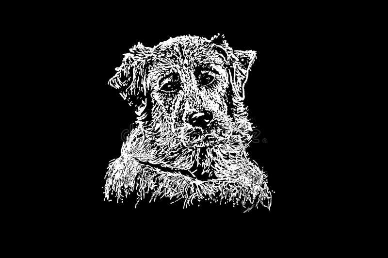 Illustration på en svart bakgrund - labrador vektor illustrationer