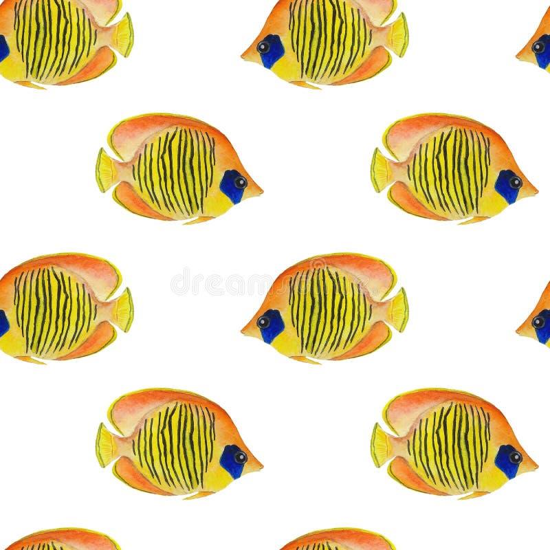 Pattern Sea fish illustration watercolor Ocean Animals Digital paper Textile set Summer decor Wall wallpaper Wall design Wallpaper. Illustration Pattern Sea fish royalty free illustration