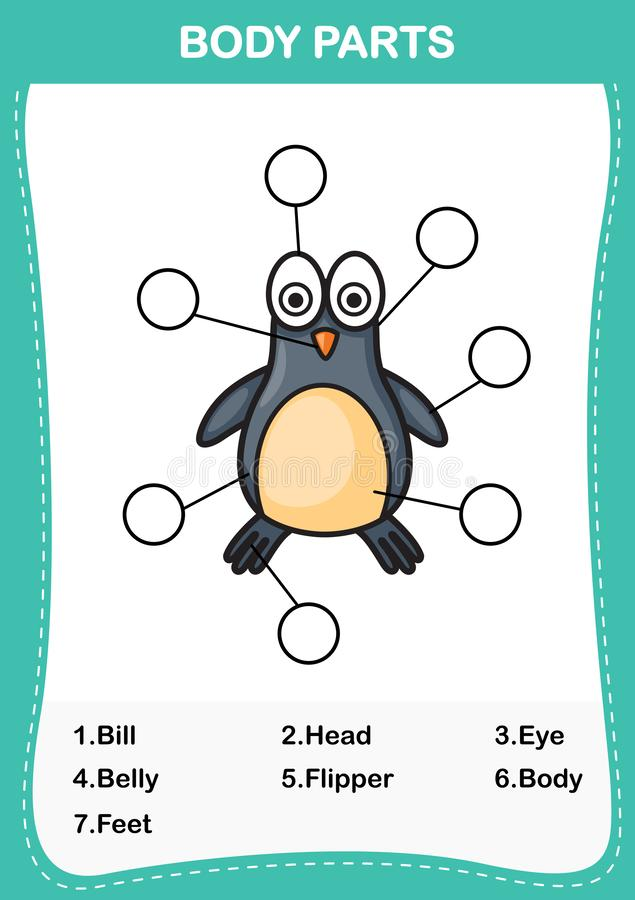 Penguin vocabulary part of body,Write the correct numbers of body parts. Illustration of penguin vocabulary part of body,Write the correct numbers of body parts royalty free illustration