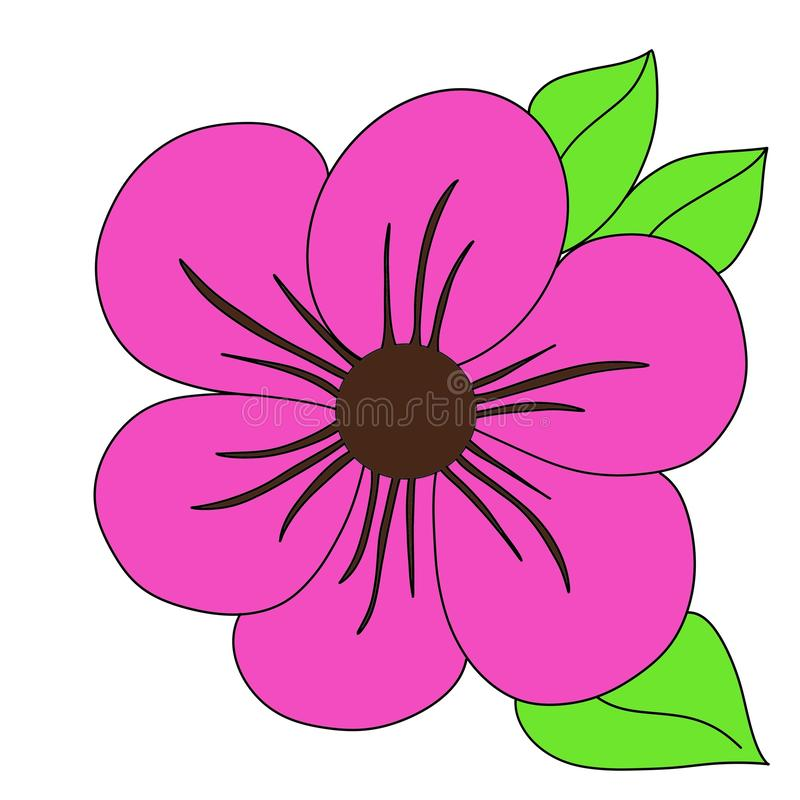 Pink coloured flower with leaves vector illustration