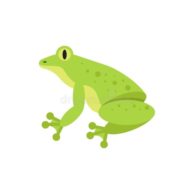 Illustration plate de style de vecteur de grenouille illustration libre de droits