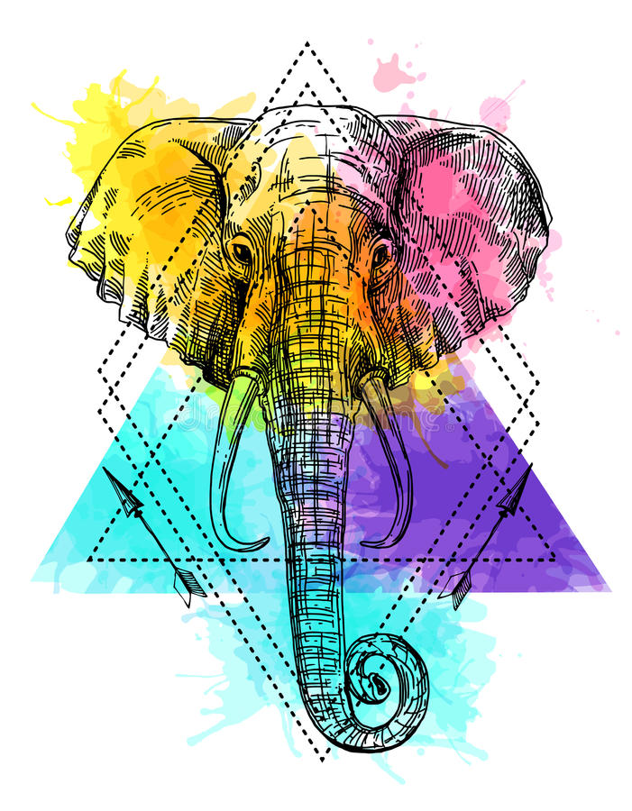 Illustration portrait of elephant. Hand drawn vector illustration portrait of elephant. Sketch style drawing stock illustration