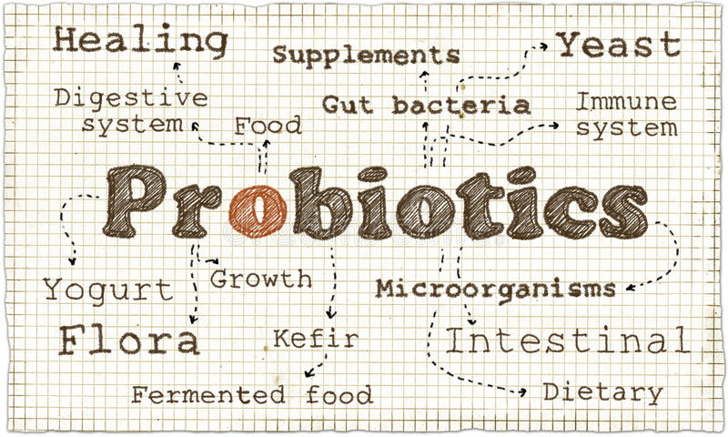 Download Illustration About Probiotics Stock Illustration - Illustration of food, chalk: 68117092