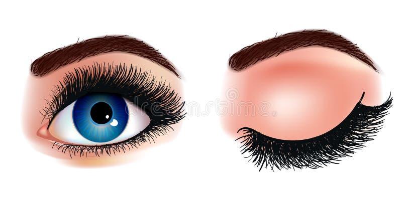 Illustration réaliste d'extension de mèche d'oeil Les yeux de la femme bleu-foncé fraîche Idée pour des cartes de visite d'affair illustration libre de droits