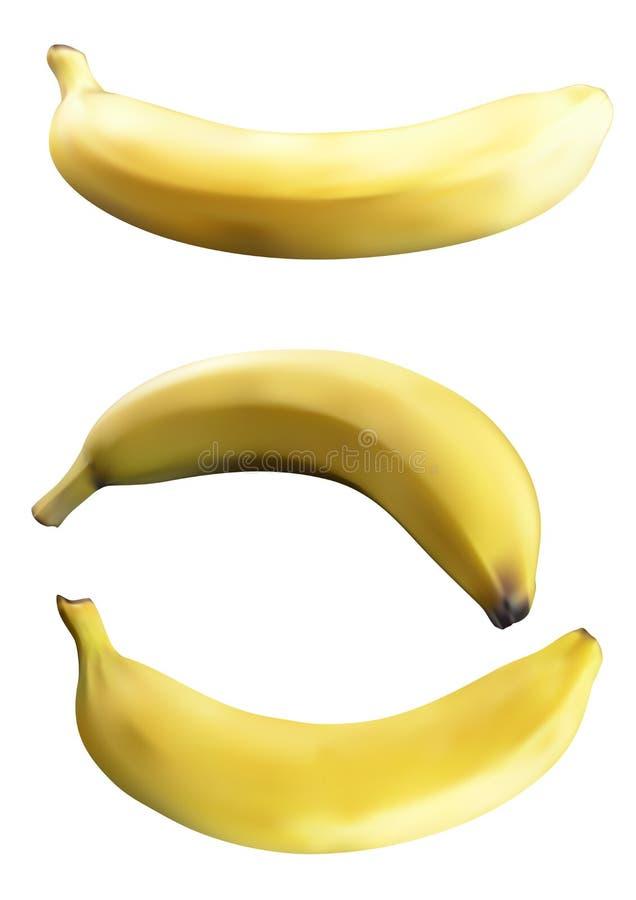 Illustration réaliste de banane photos stock