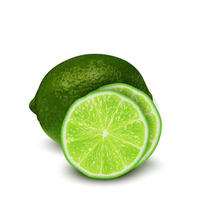 Illustration réaliste du vecteur 3d de fruit vert coupé en tranches de chaux fléau illustration stock