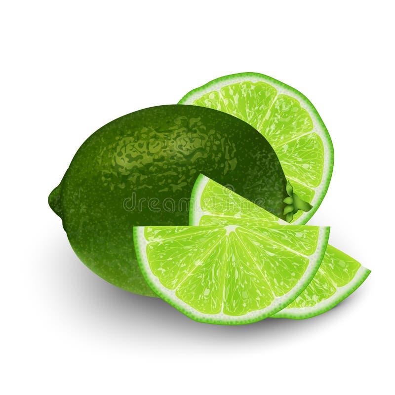 Illustration réaliste du vecteur 3d de fruit vert coupé en tranches de chaux fléau illustration de vecteur