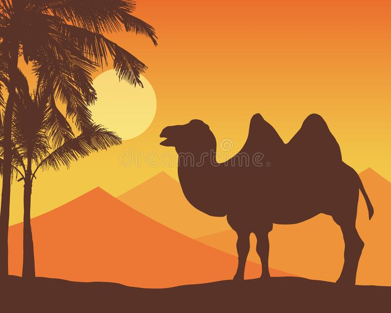 Illustration with realistic silhouette of a camel and palm trees. Sand dunes and desert on background under orange sky with sun, royalty free illustration