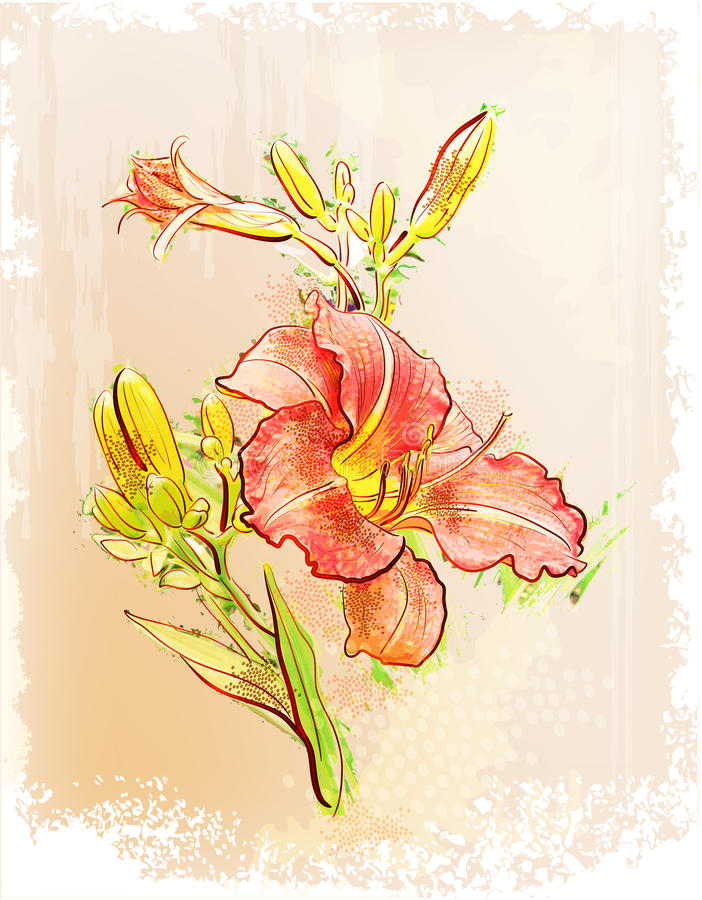 Illustration of  red lily