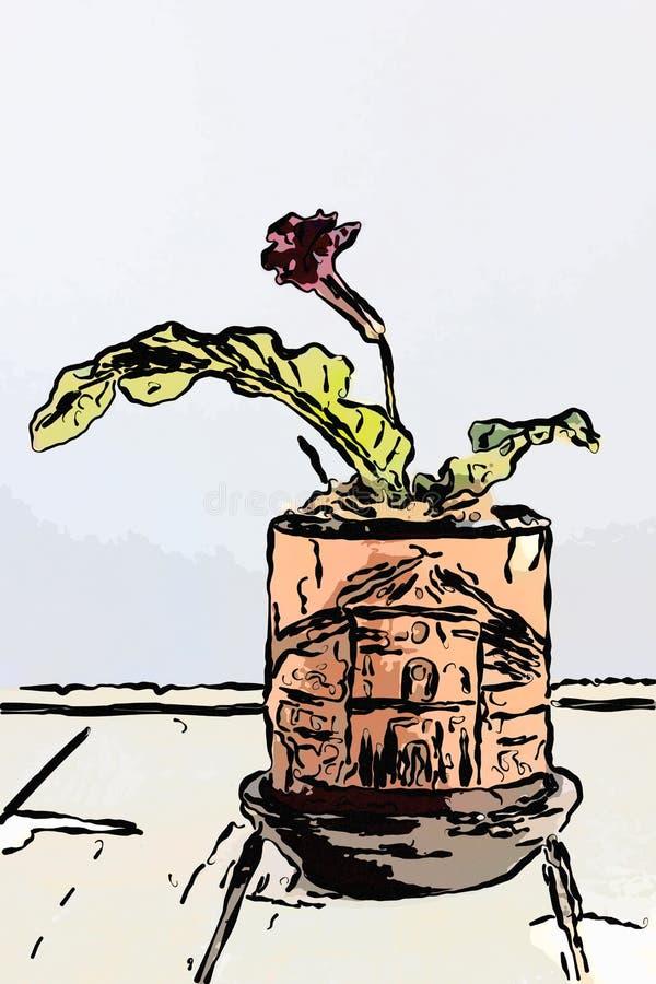 Illustration of red streptocarpus home plant in brown clay flowerpot . vector illustration
