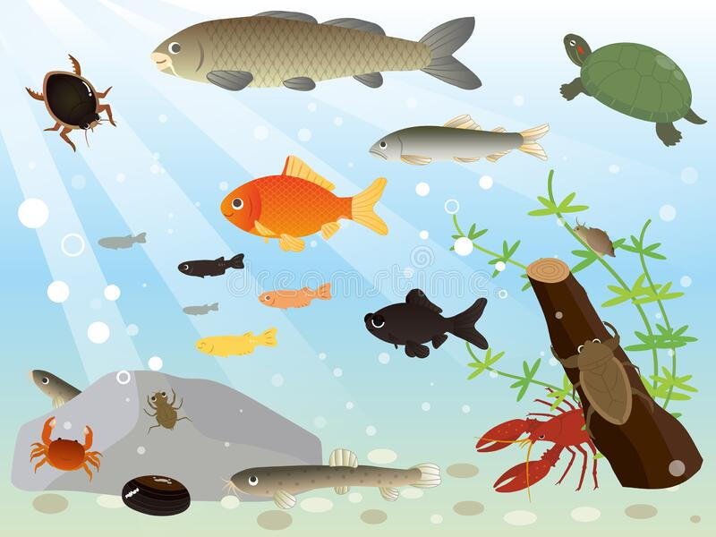 Wild animals drinking from river - Download Free Vectors, Clipart Graphics  & Vector Art