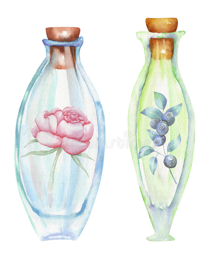 Illustration romantic and fairytale watercolor bottles with forest blueberries branches and peony flowers inside royalty free illustration