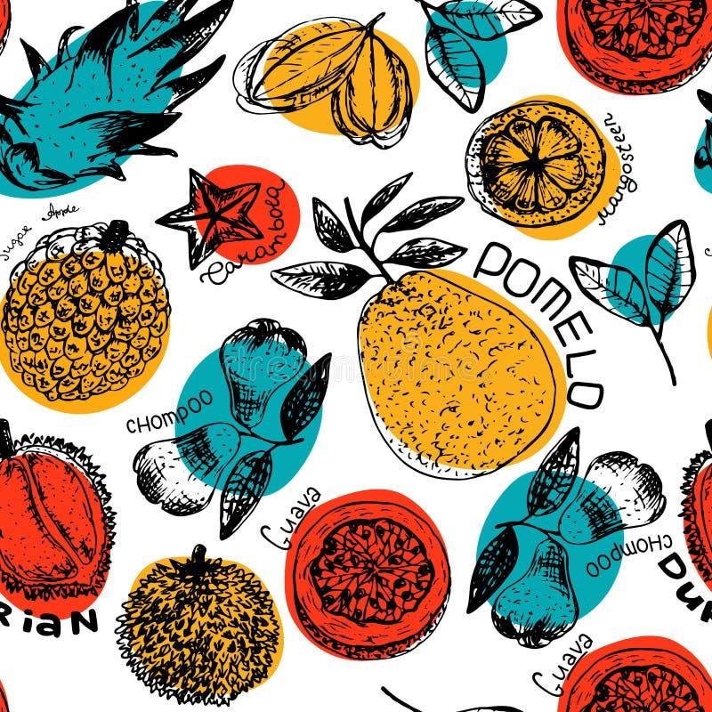 Illustration sans couture de modèle de vecteur tropical frais de frouit illustration de vecteur