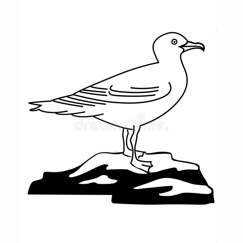 Illustration of the sea gull. On white background stock illustration