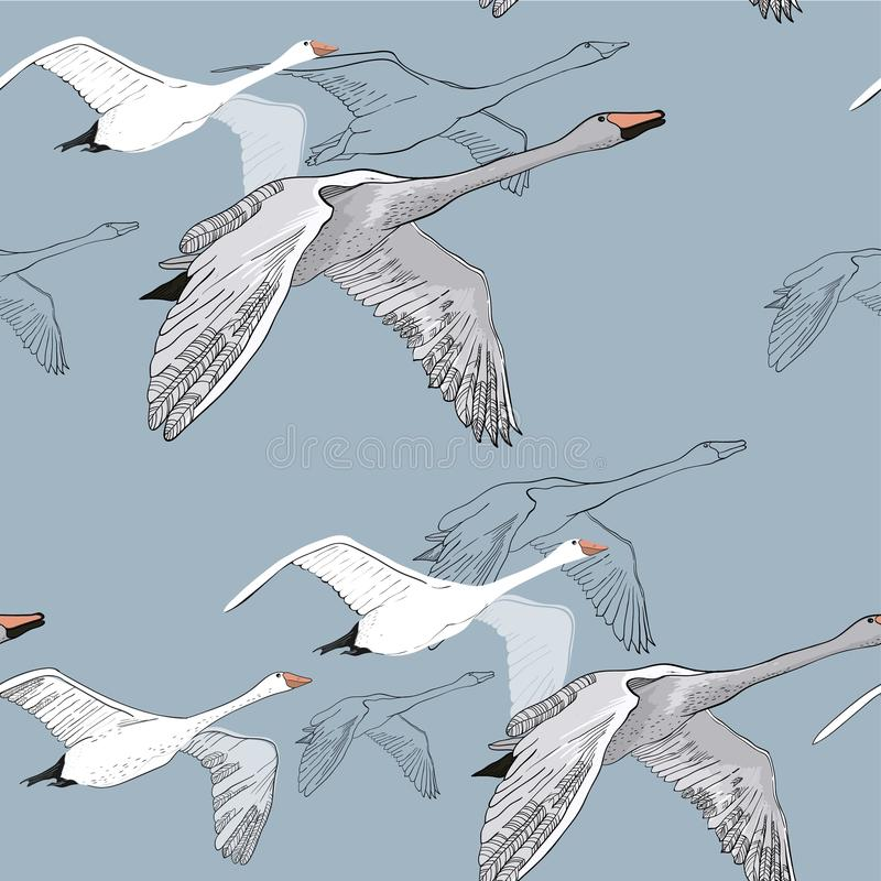 Illustration of Seamless pattern of drawing Flying Swans. Hand drawn, doodle graphic design with birds. Wrapping paper stock image