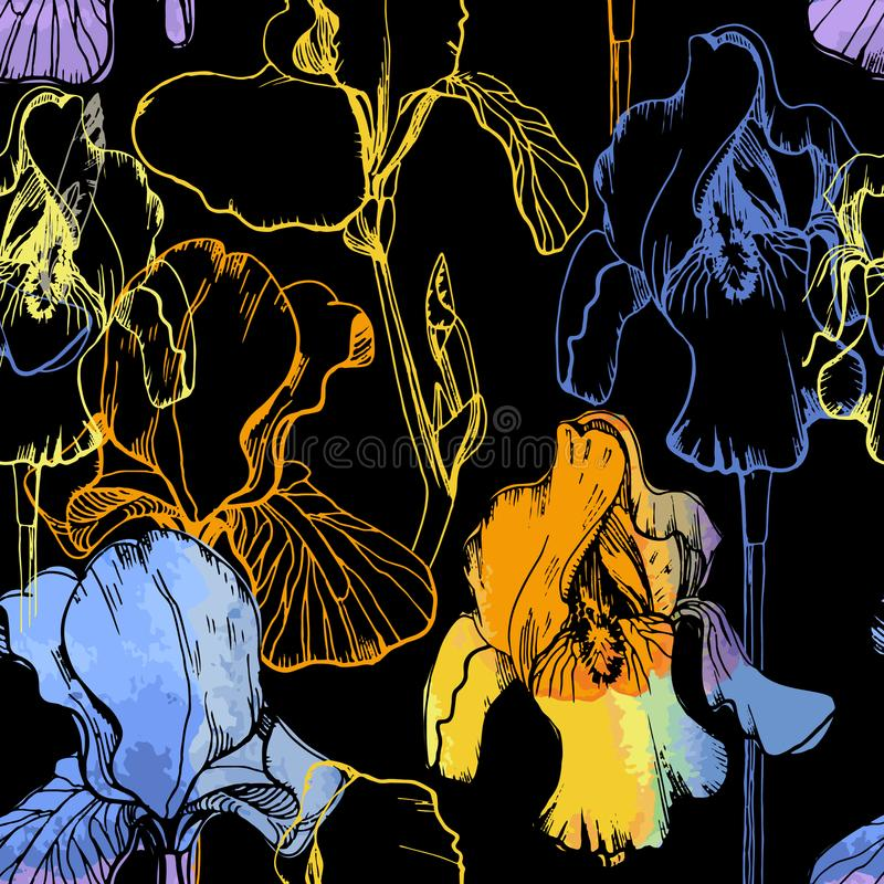 Illustration of seamless pattern with watercolor irises. Summer flower on black background. Floral wrapping paper. stock illustration