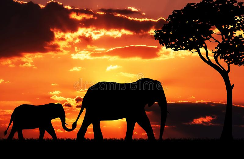 Silhouette of elephant mother with baby royalty free illustration