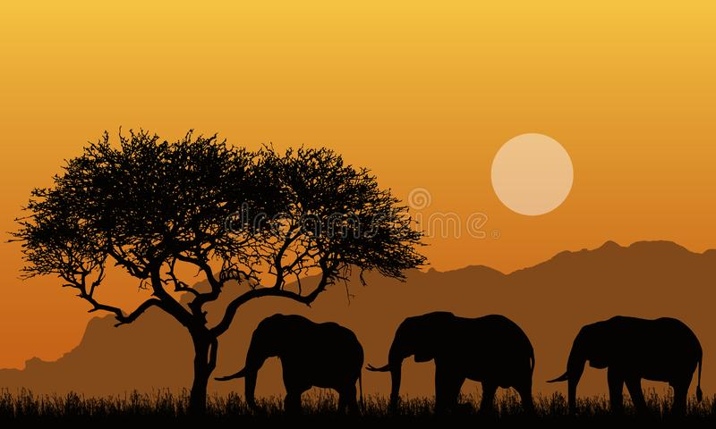 Illustration of silhouettes of mountain landscape of african safari with tree, grass and three elephants. Below the orange sky. With the sun - vector stock image