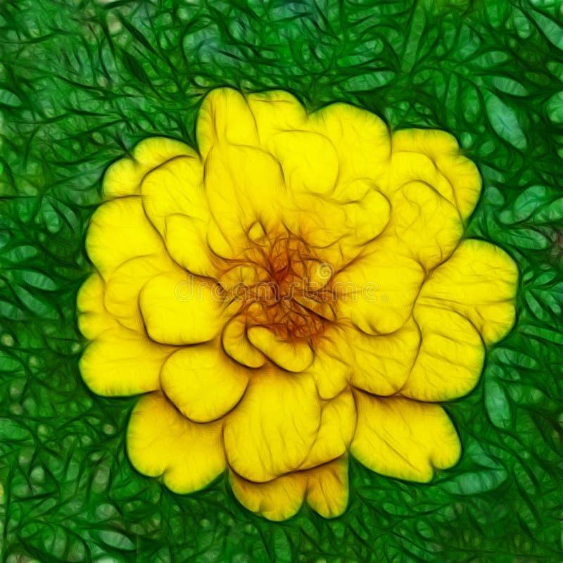 Illustration of a Solitary Marigold in Full Bloom stock illustration